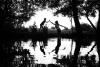Two children, seen in silhouette, high-five each other. Picture is taken from the other side of a stream and the children are reflected in the water. Trees surround them giving a fairytale setting.